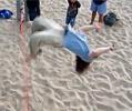 back flip dismount