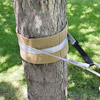 slackline tree protection - using cardboard